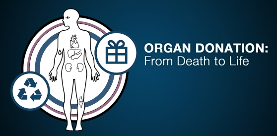 Organ Donation: From Death to Life